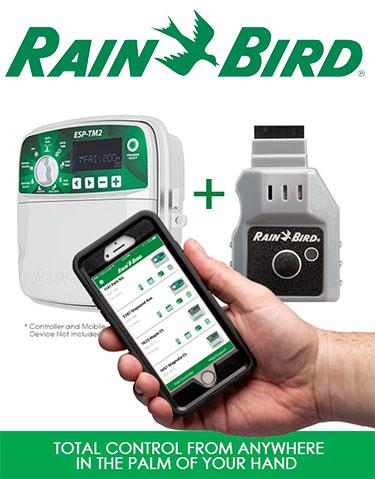 https://lacostera.org/wp-content/uploads/2020/06/rain-bird.jpg